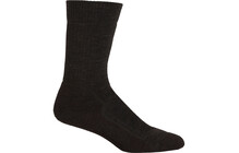 Icebreaker Men's Socks Hike+ Mid Crew earthen/spruce